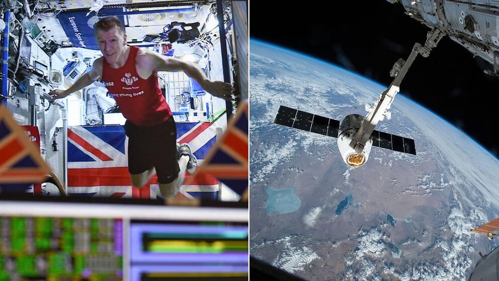 Den brittiske astronauten Tim Peake, 44, sprang på söndagen maraton i rymden.