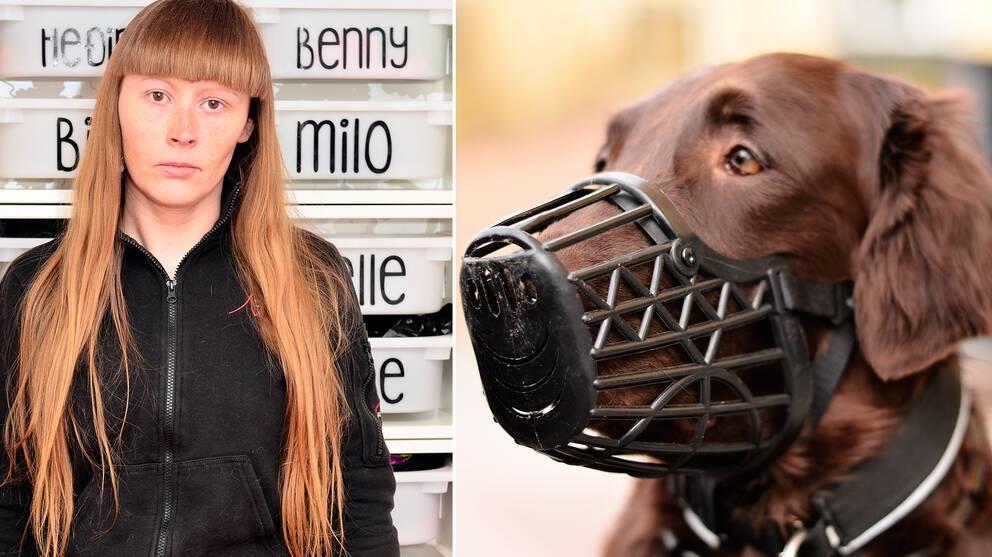 Denise skyddar sina hundar med munkorg.