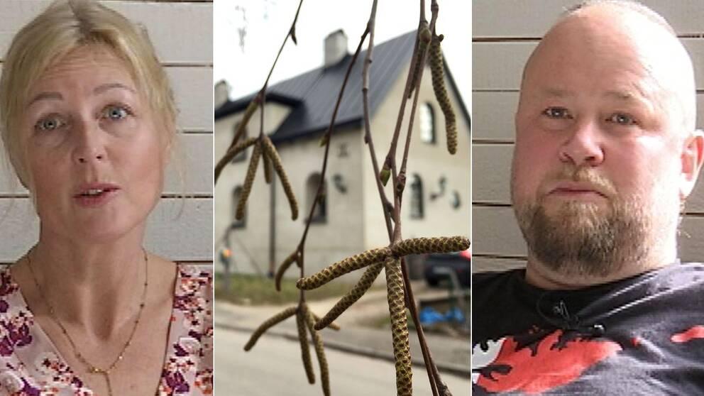 Amanda och Anders Tuvgren flyr pollen i Sörmland och flyttar till Kiruna.