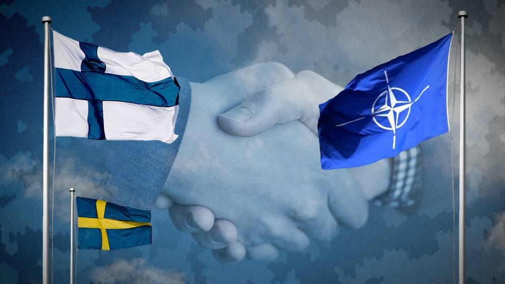 Sverige redo ta hjalp av nato