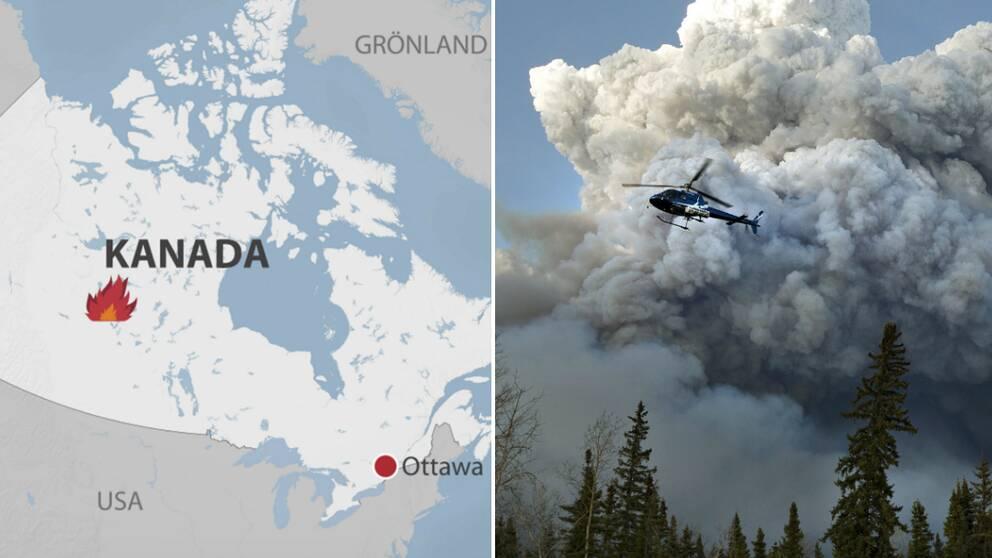 Kanadabrand