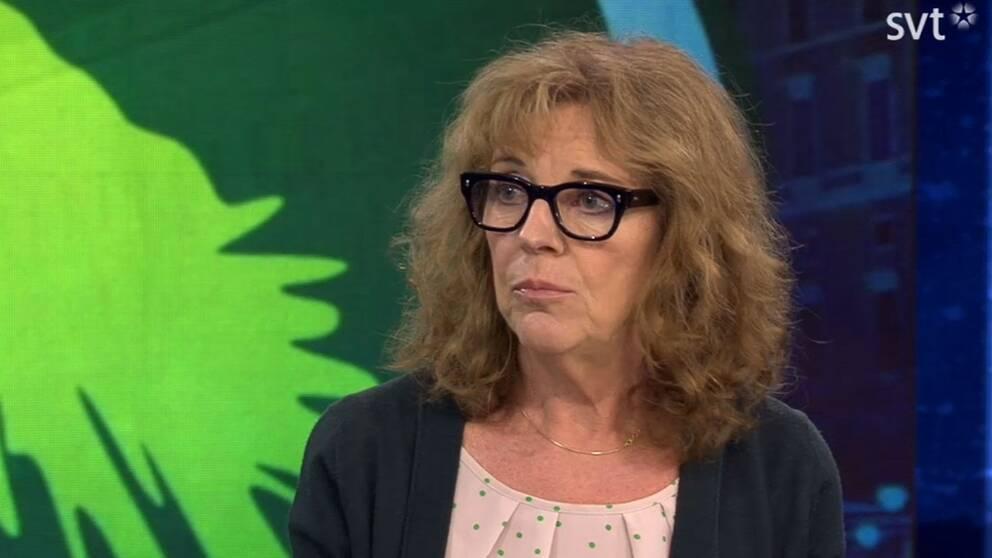 Margit Silberstein, inrikespolitisk kommentator