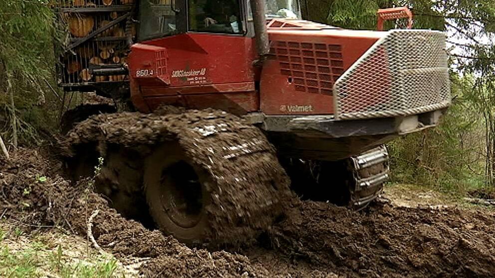 Skogsbolaget Moelven får skarp kritik från såväl ortsbor som Länsstyrelsen och Skogsstyrelsen efter omfattande körskador i närheten av naturreservatet Rennstadsnipan i Kil. Bland annat har en vandringsled körts sönder och känsliga vattendrag drabbats av slamutfällningar.