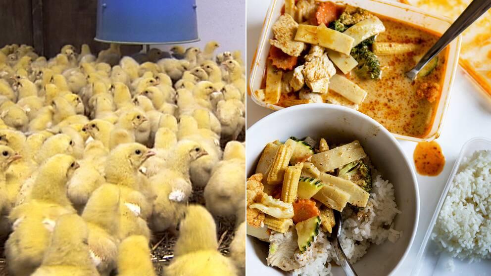 När man väljer att äta kyckling på en vanlig lunchrestaurang kan det vara bra ur klimatperspektiv, men ofta har kycklingen ett baggage med sig vad gäller användningen av antibiotika, enligt Anna Richert på WWF som varit med och tagit fram den nya Köttguiden.