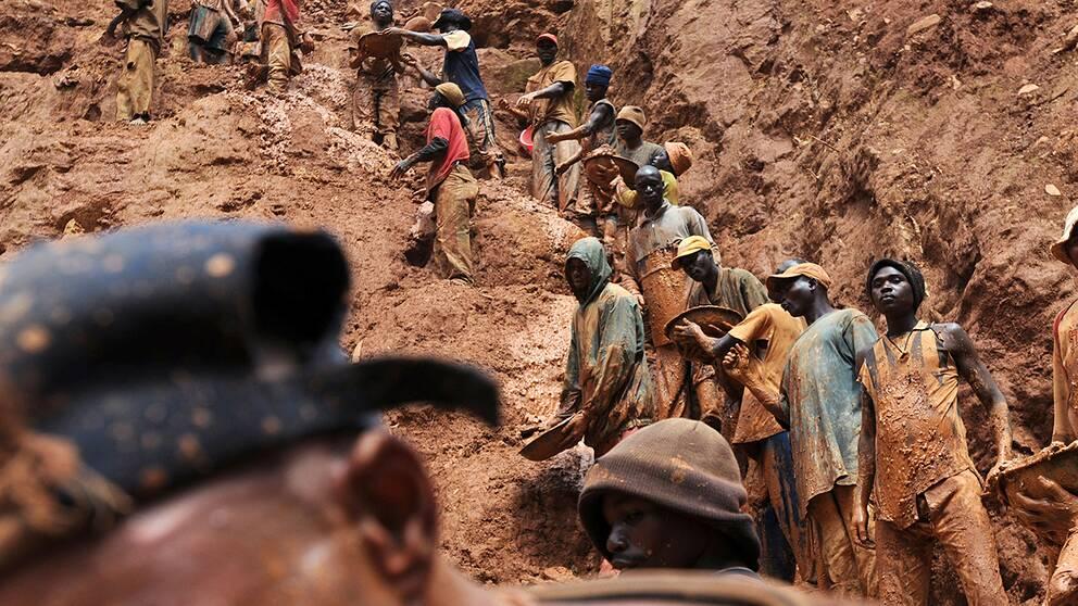 Gruvarbetare i en guldgruva i Bunia, i nordöstra Kongo.