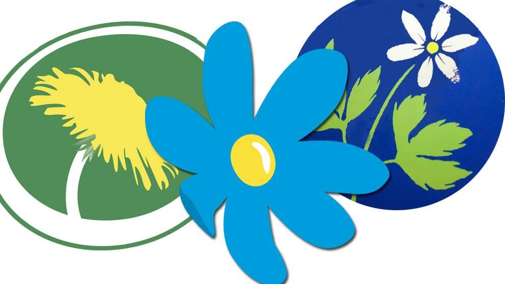 Miljöpartiet, Sverigedemokraterna och Kristdemokraterna får årshögsta i Skops mätning på annandagen.