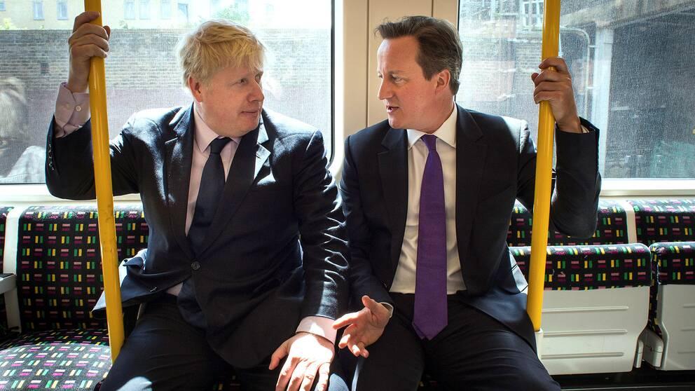 Brexit-förespråkaren Boris Johnson och premiärminister David Cameron i samspråk