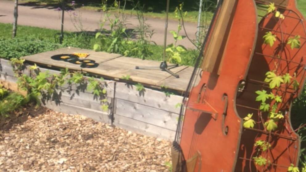 Top Cats idéträdgård, med ståbas, vinylskivor och mickstativ.