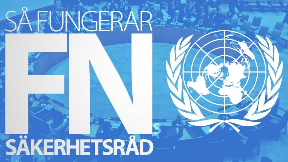 Så fungerar FN Säkerhetsråd