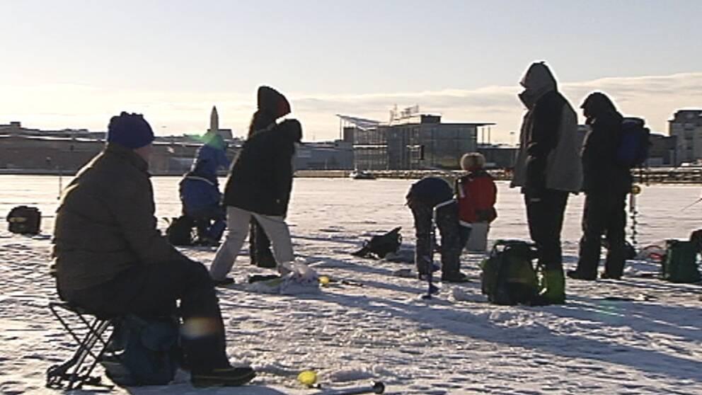 Pimplare i Göteborg den 14 december.