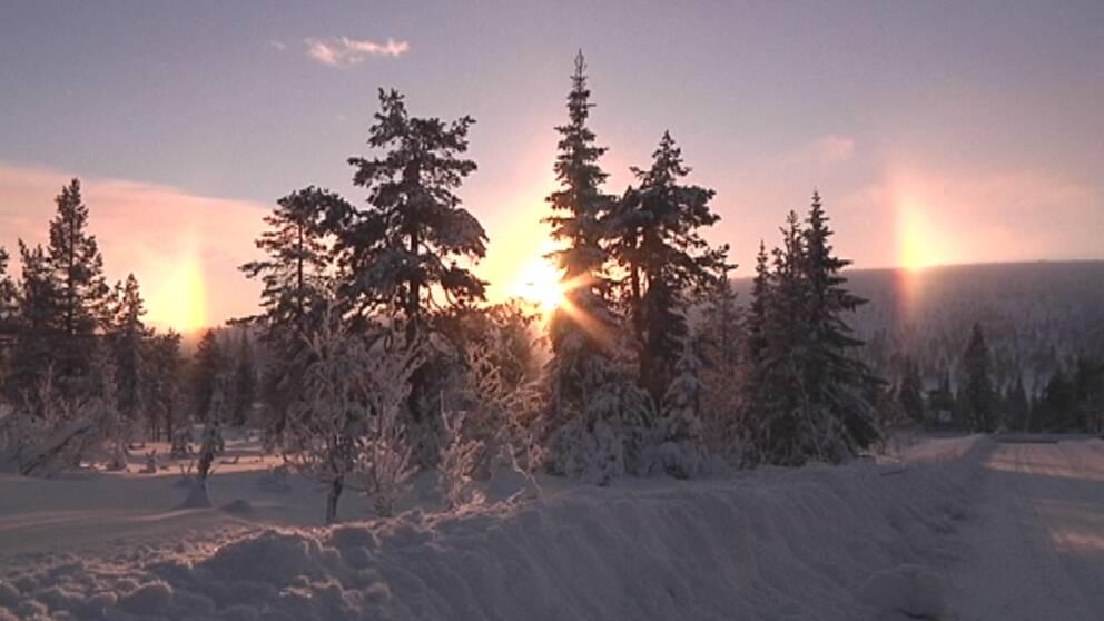 Bisolar i Östra Kalven i Sälenfjällen i norra Dalarna den 4 december.