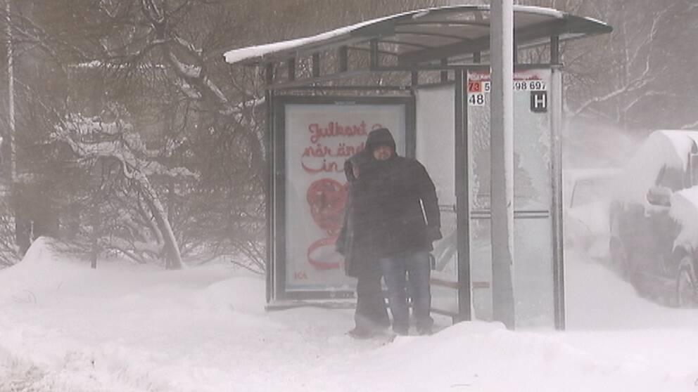 Kommer det någon buss tro? Ett snöoväder slog hårt mot Stockholm med omnejd den 5 december och kollektivtrafiken drabbades av inställda turer och långa förseningar.