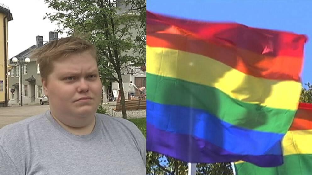 Hanna hannes och regnbågsflaggan