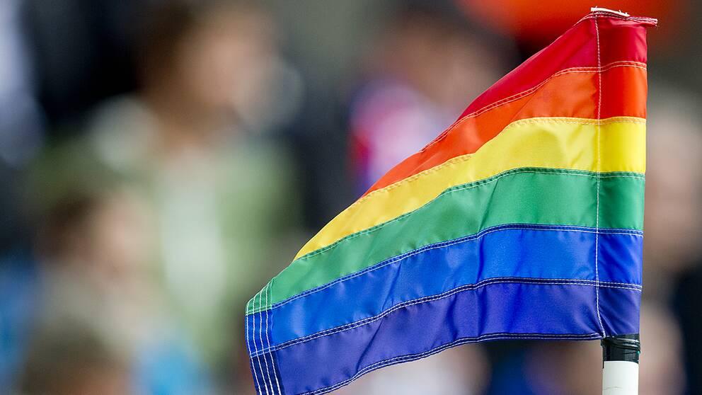En lag som i delstaten Mississippi skulle ha gjort det möjligt att neka HBTQ-personer service i samband med vigsel och som skulle tvinga transpersoner att följa vissa klädkoder och regler för offentliga toaletter har stoppats av en federal domare.