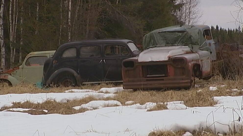 En person i Strömsunds kommun äger nästan 300 bilar