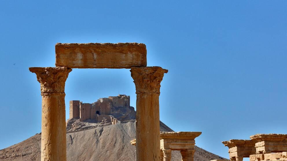 Palmyra i Syrien, en av alla platser där kulturarv förstörts och plundrats.