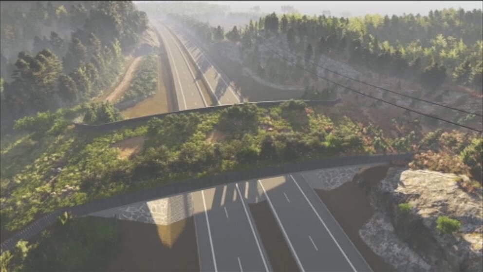Ekodukten kommer sträcka sig över E18, några kilometer väster om avfarten till Skutberget.