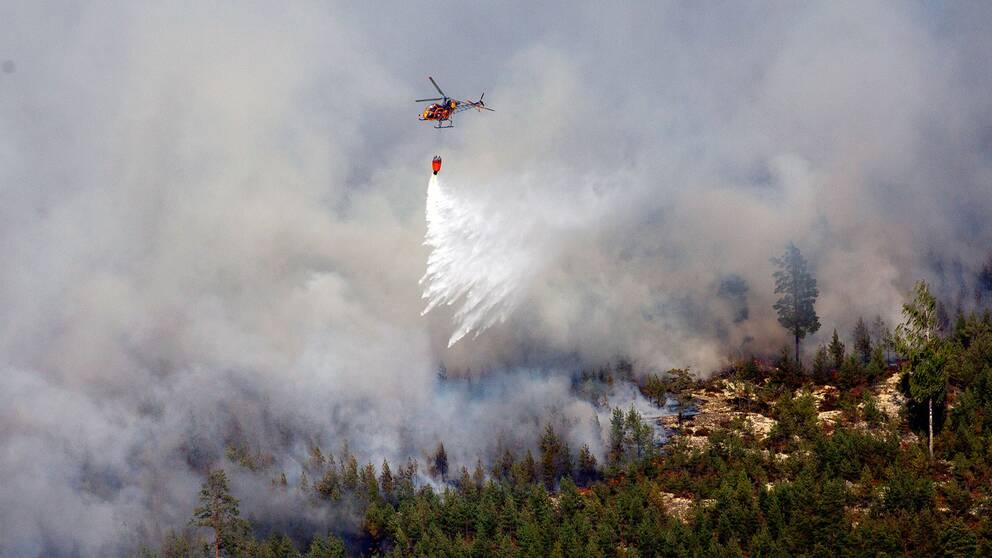 Rök stiger från skogsbranden som härjade i Västmanland i augusti 2014.