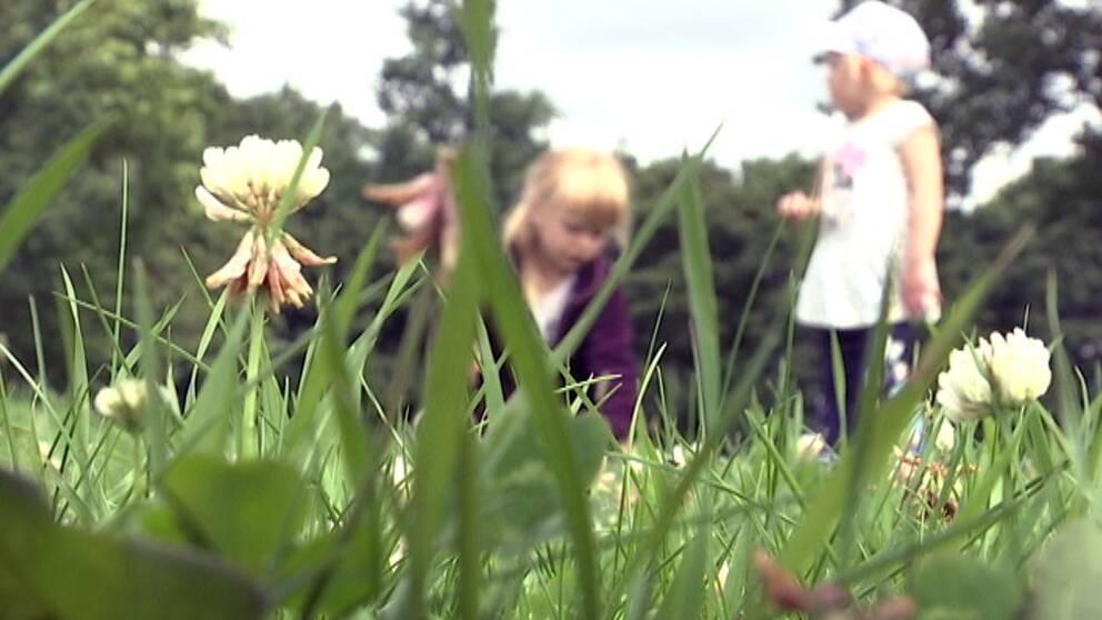 Två flickor leker i gräs.