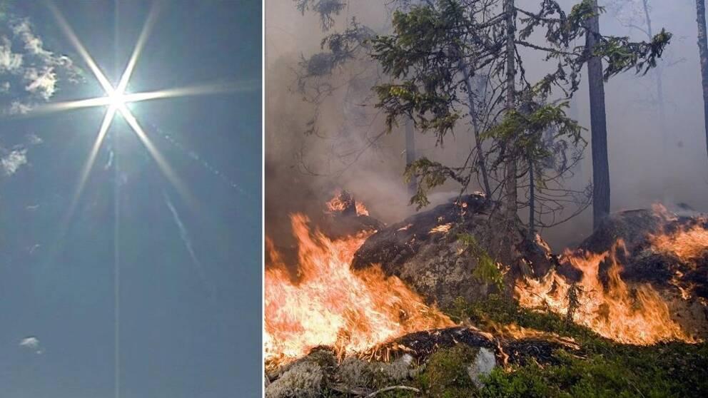 Delad bild: en sol och en skogsbrand.