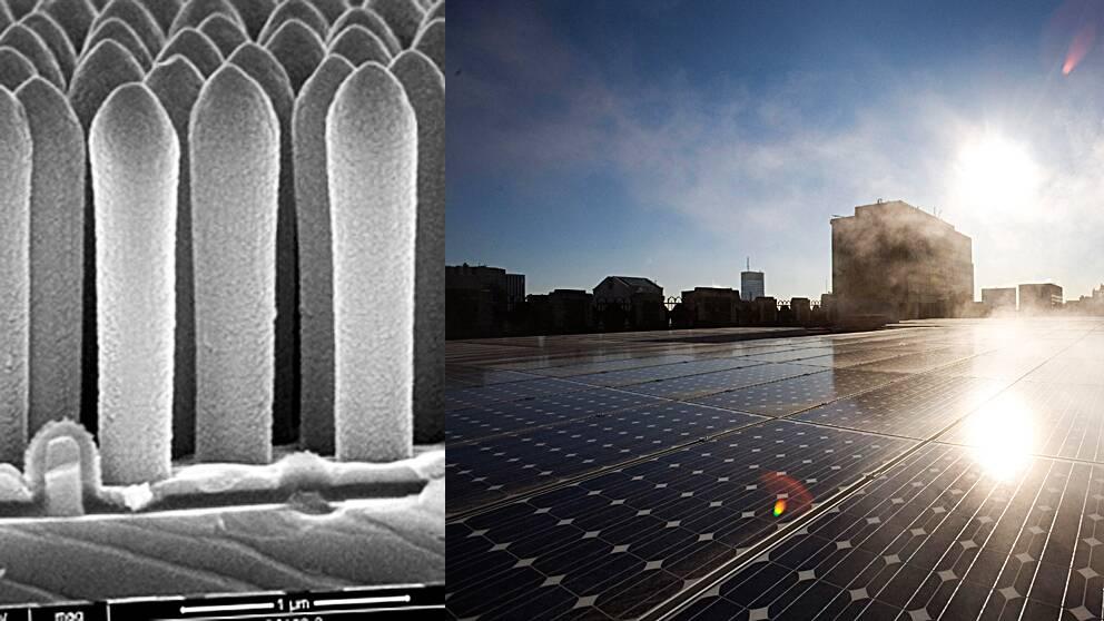 Dessa små nanotrådar ska göra solcellstekniken effektivare, hoppas forskare.