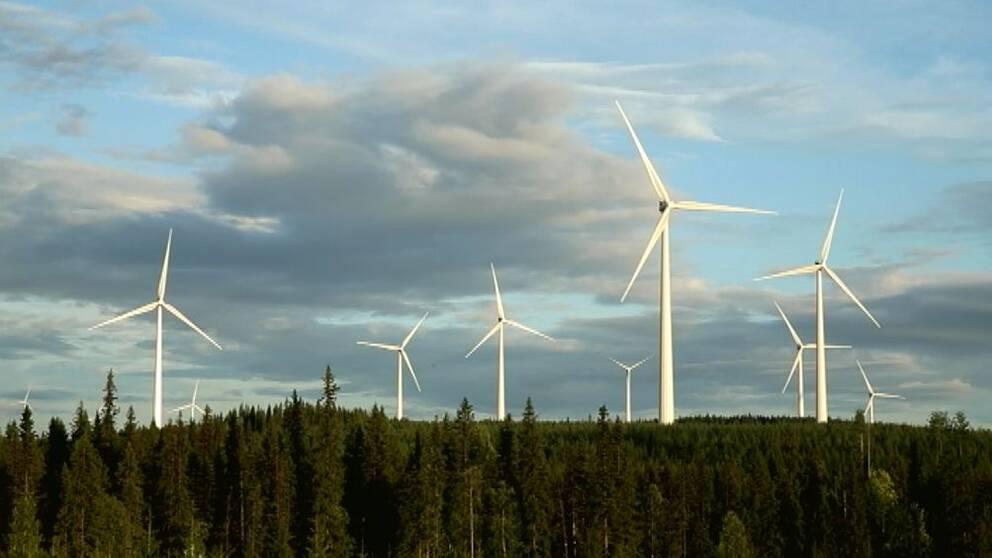 Fler vindkraftverk planeras