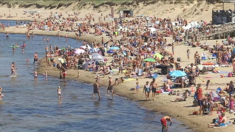 Strålande solsken och värme lockade många sol- och badsugna till utanför Halmstad den 22 juli.