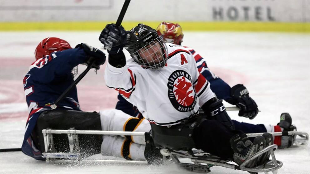 Handikapphockey