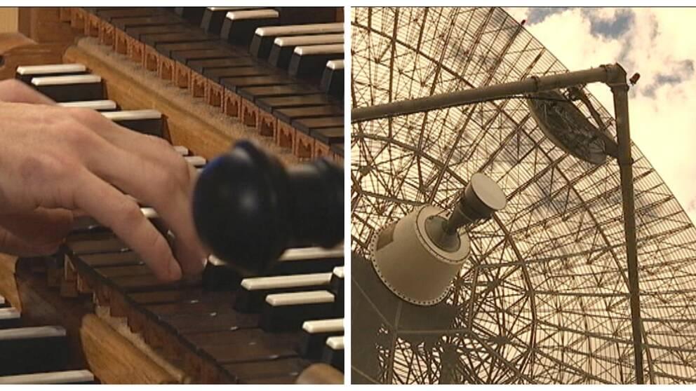 orgel observatorie